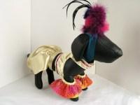 Carmen Miranda Dog Costume