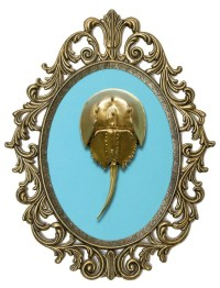 Gold Horseshoe Crab Victorian Framed Object Wall Art Decor