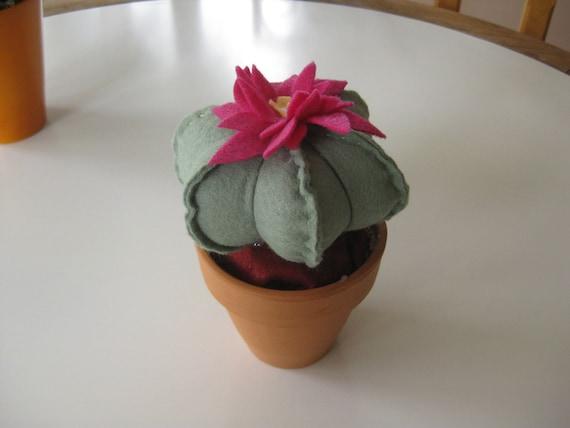Felt Cactus Pin Cushion with Clay Pot