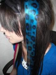 blue and black leopard print hair