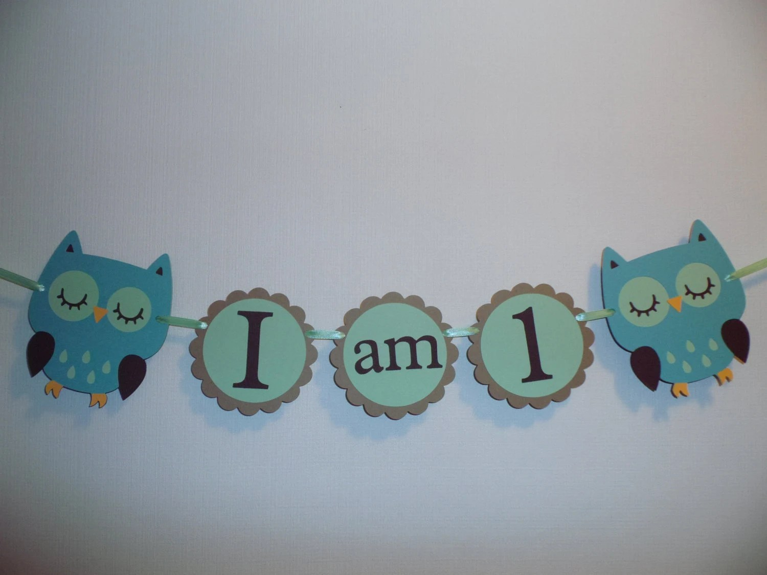 high chair decorations 1st birthday boy ikea bed banner i am 1 hayley wise owl by