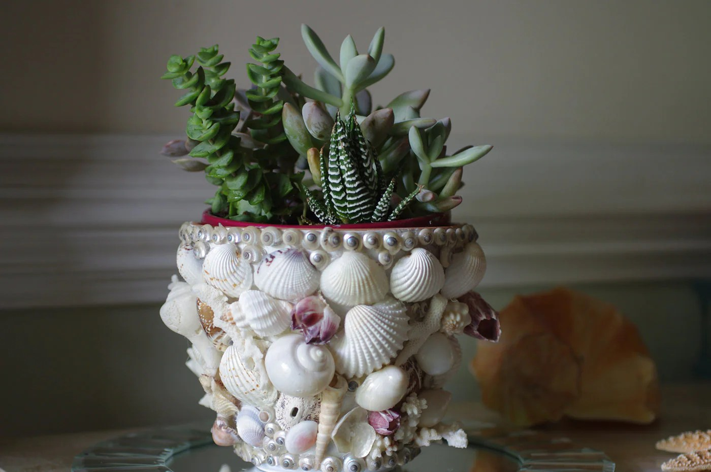 Beach Decor Flower Pot Seashell Coral and Barnacle Garden