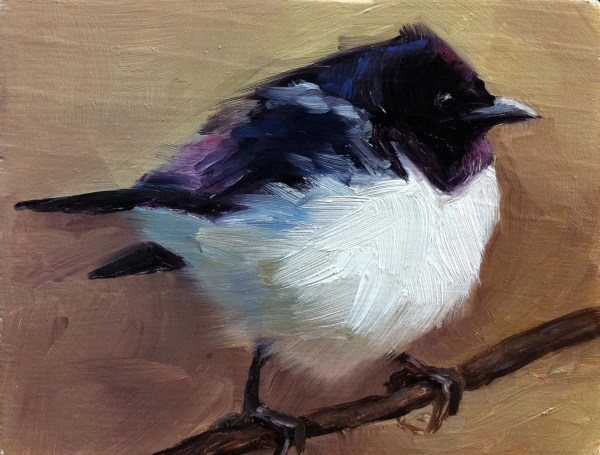 Violet-backed Starling Bird Painting Open Edition Print