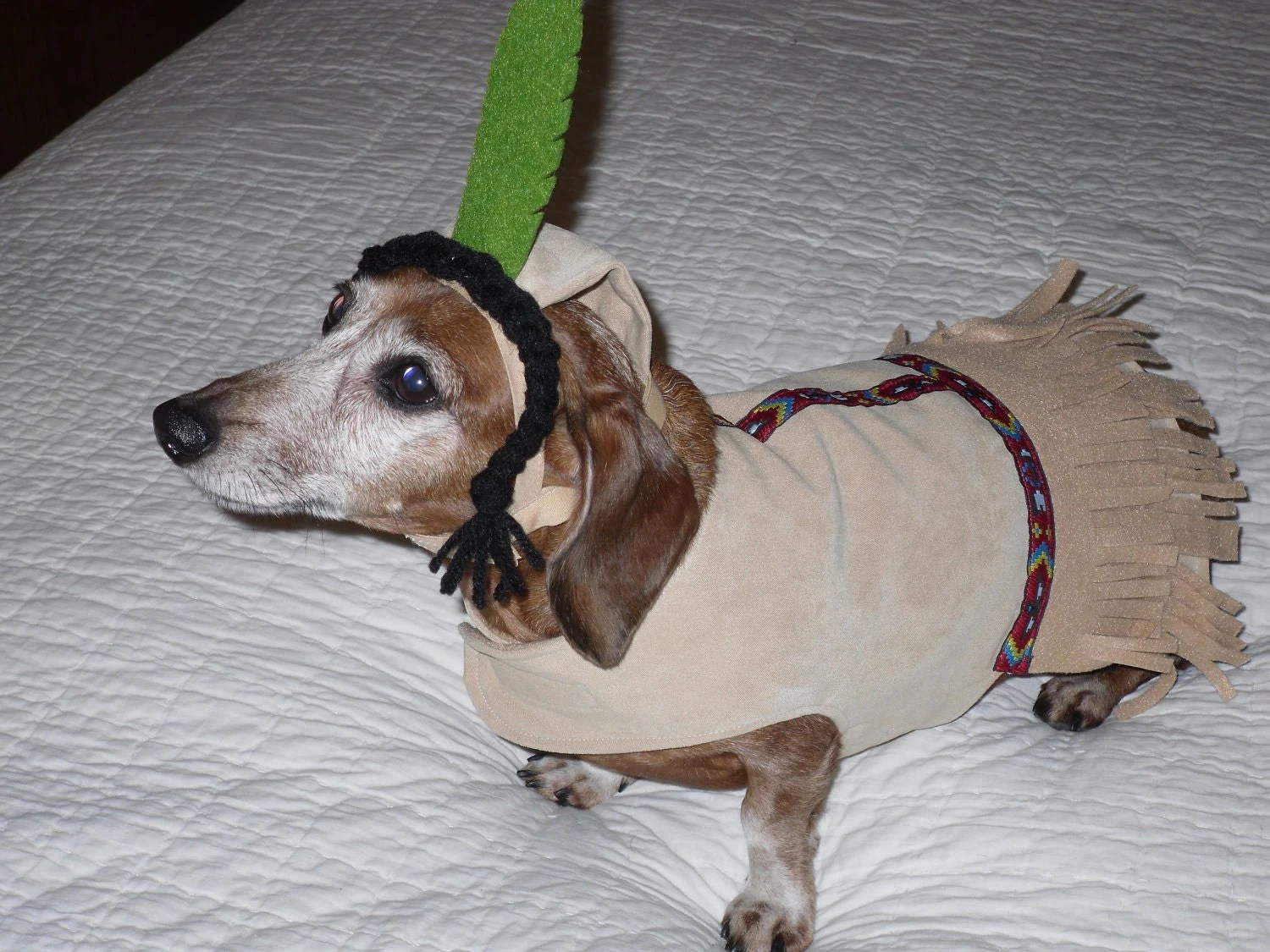 Small Dog Indian Maiden Costume with Braids Toy by