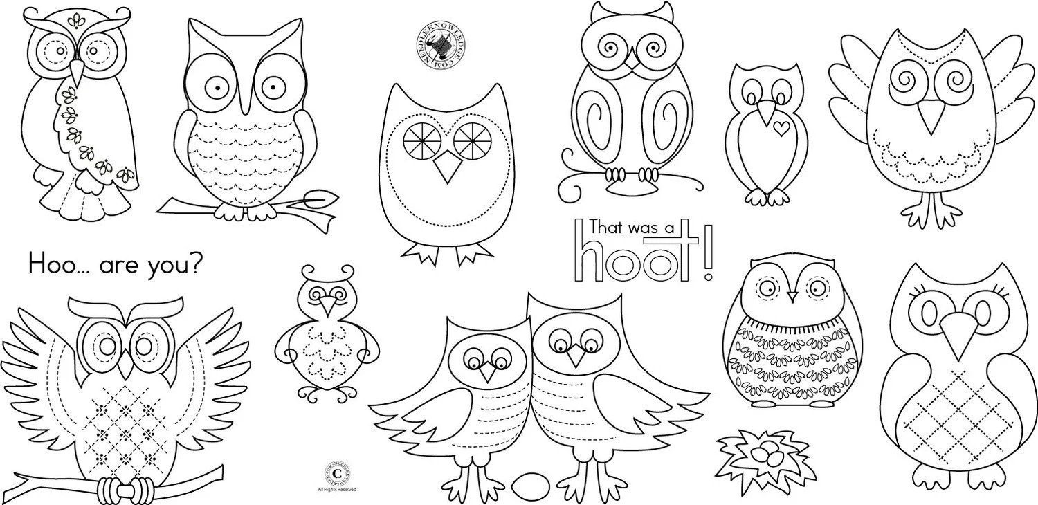 Owl Pattern Collection