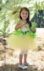 Princess Tiana And Frog Inspired Tutu Dress
