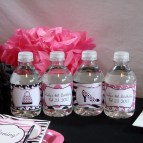 Water Bottle Labels Pink Diva Zebra Print Party