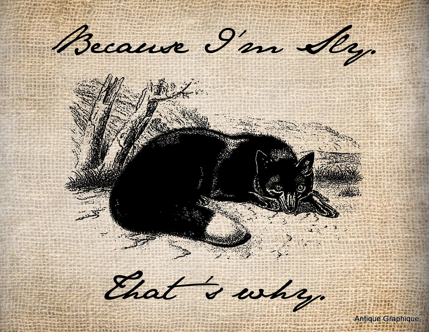 Items Similar To Antique Sly Fox Animal Quote Saying