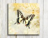 "Natural butterfly art. Canvas art. 12""/12"" - OneDesign4U"