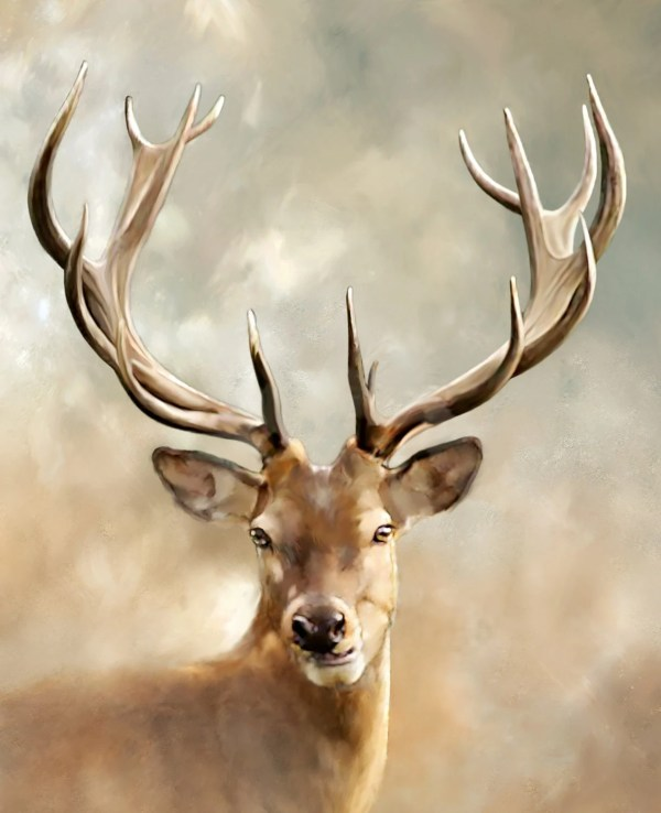Giclee Print Animal Deer
