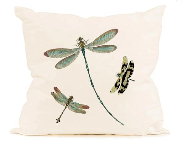 teal aqua dragonflies insects instant