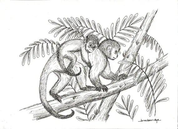 Mother and Baby Monkey Drawing Print