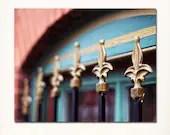 Lafayette Square  St. Louis Fleur de Lis Fence Photograph. 8x10 Fine Art Print. Affordable Home Decor and Wall Art. - Briole