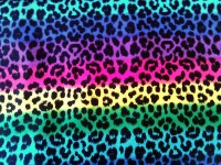 Neon Rainbow Animal Print Backgrounds