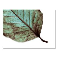 Teal Leaf Woodland Wall Art Rustic Nature Blue by ...