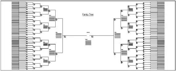 Large Family Tree Chart Bracket Style 60 x 24