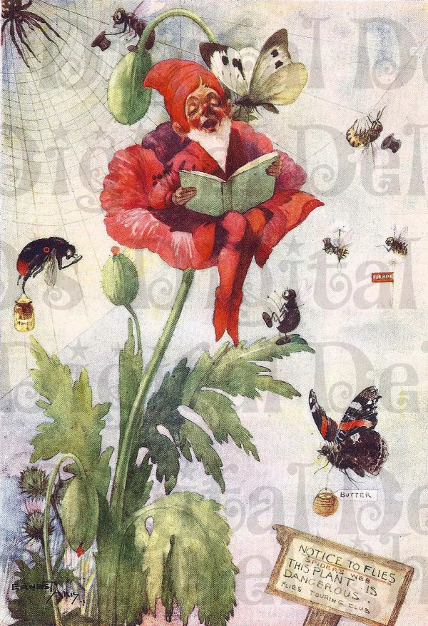 Perched In Flower. Gnome Vintage Illustration. Fairy