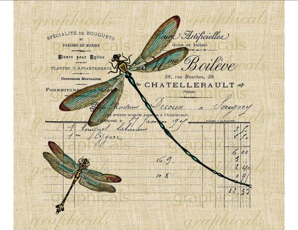 teal dragonflies paris french ephemera