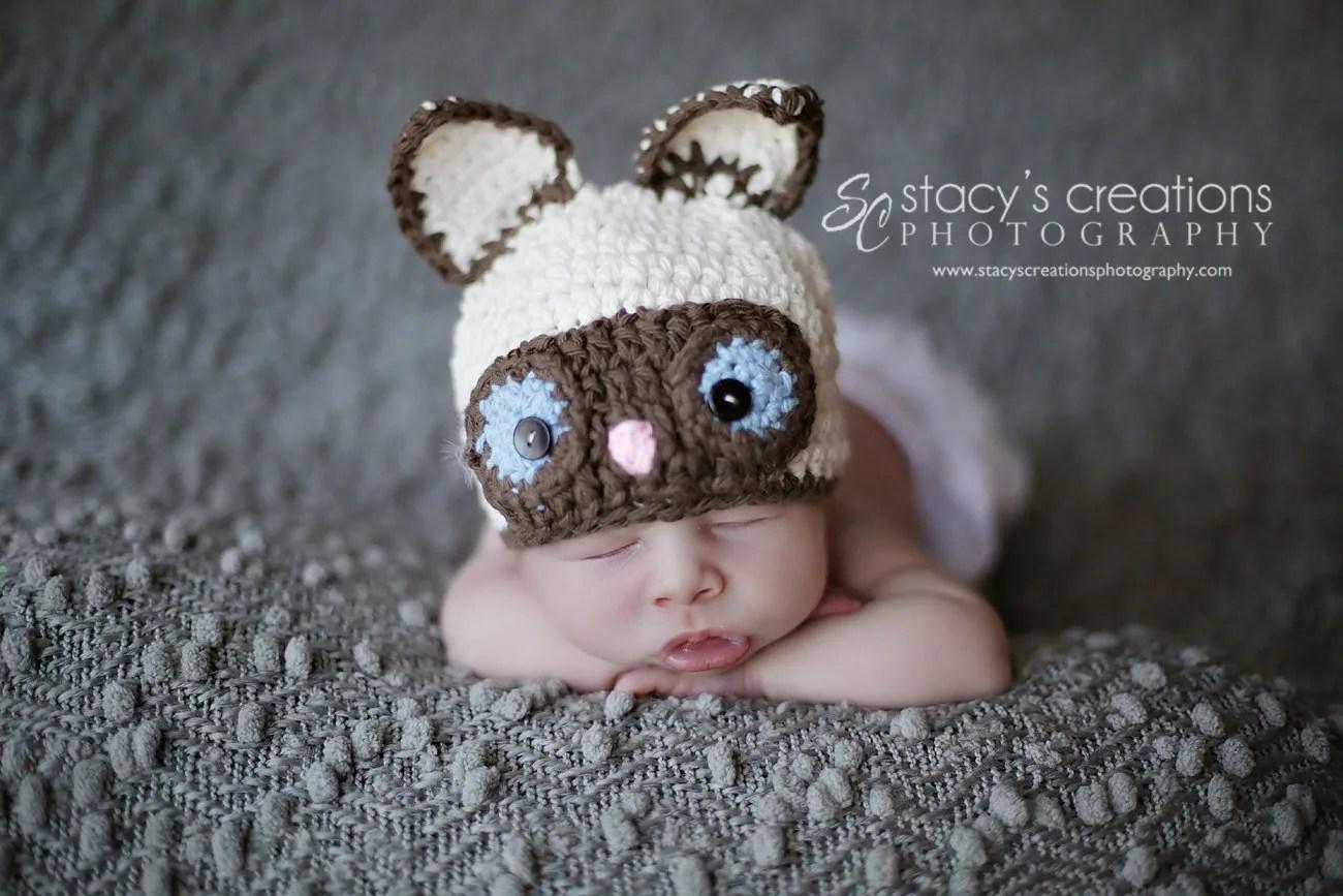 Baby Cat Hat Baby Kitty Hat Siamese Cat Hat Baby Hat