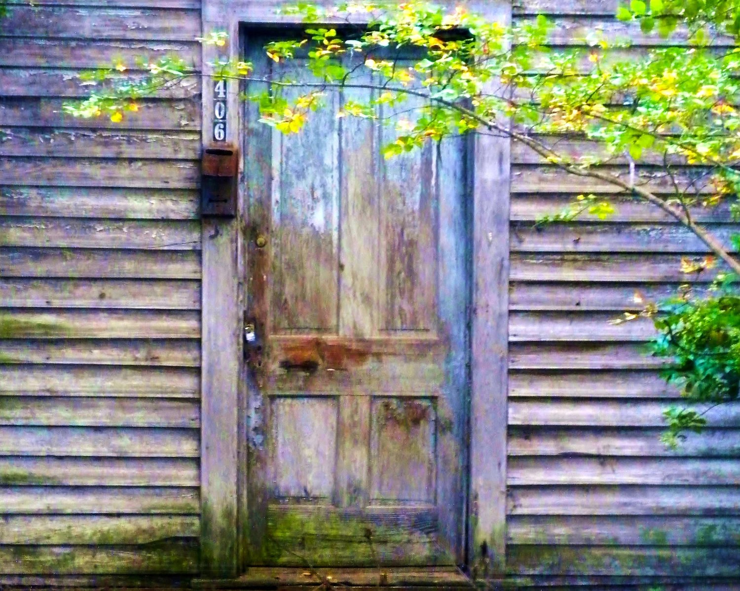 Fine Art Photography - Door with Aged Colors - Southern, Rural, Travel Photography-8x10 Wall Art - PetitePastiche