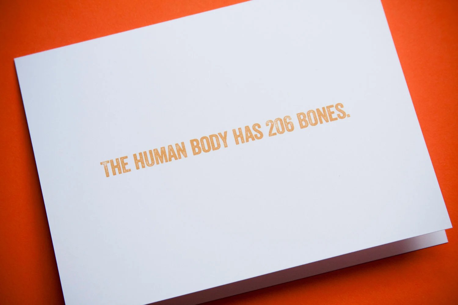 207 Bones I Like You Card By Howawcard On Etsy