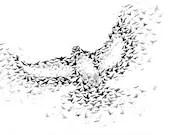 Bird Created From Flying Birds Art Print A3, Black and White Art, Bird Art, Modern Art, Wall Art Home Decor - Mysoulfly