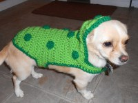 Pickle Costume for Small Dogs Crochet Pattern