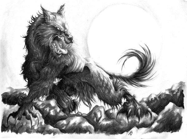 Werewolf Pencil Drawing 8x11 Print by TheGuineaPotter on Etsy