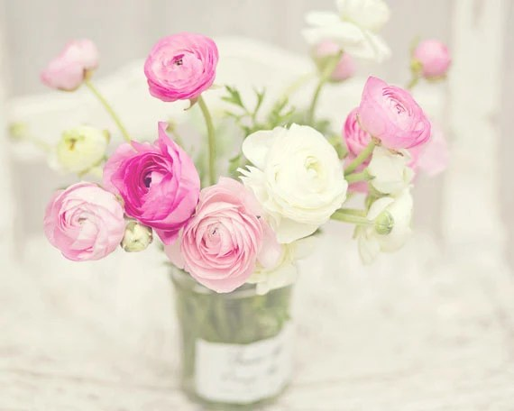 Flower Photography - Pink & White Ranunculus Flowers - French - 8x10 Fine Art Photography Print - Pink White Home Decor - BLintonPhotography