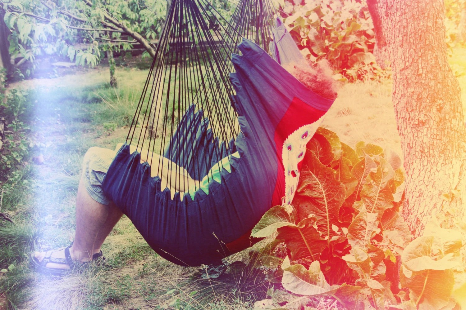 peacock hanging chair manufacturers deep blue hammock decorated with white