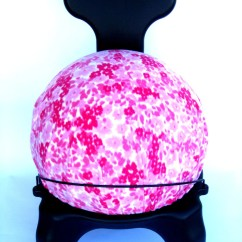 Fitball Balance Ball Chair Coffee Table With Chairs Exercise Cover Fits Isokinetics Inc., Gaiam, 52/55cm Balls Pink Fleece Flowers