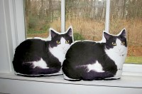 Hypoallergenic pet pillow cat pillow pet photo pillow