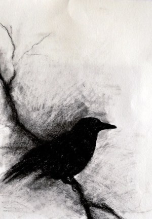 charcoal drawing crow dark halloween branch gothic drawings abstract simple bird paintings cool draw wall artist crows drawn landscape