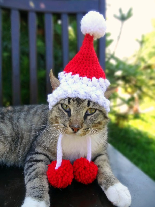 Cats and Dogs with Santa Hats