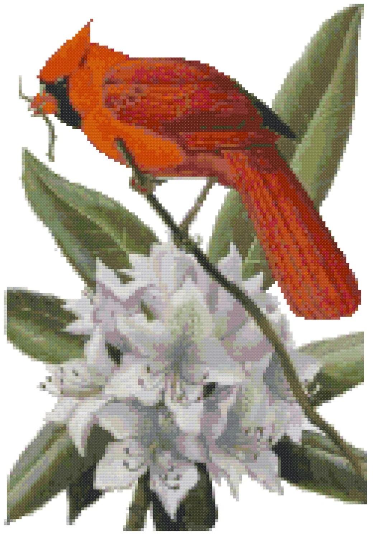 West Virginia State Bird Amp Flower Counted Cross Stitch Pattern
