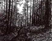 Forest Path Drawing - ouroboros81