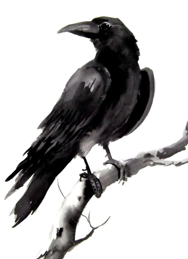 Crow Raven Original Watercolor Painting 9 X 12 Originalonly