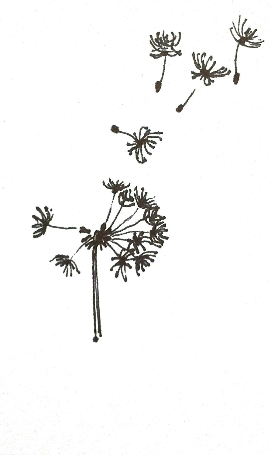 Tiny Dandelion Original Ink Drawing 3X5 Fly Little Ones