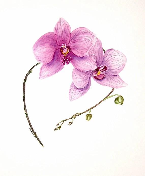 "Orchid - original watercolour painting - 12"" x 10"" Not a Print - KarensArt4you"