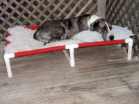 XXX Large Great Dane Dog Beds Big Dog Beds by ...
