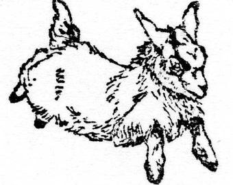 Popular items for pygmy goat on Etsy