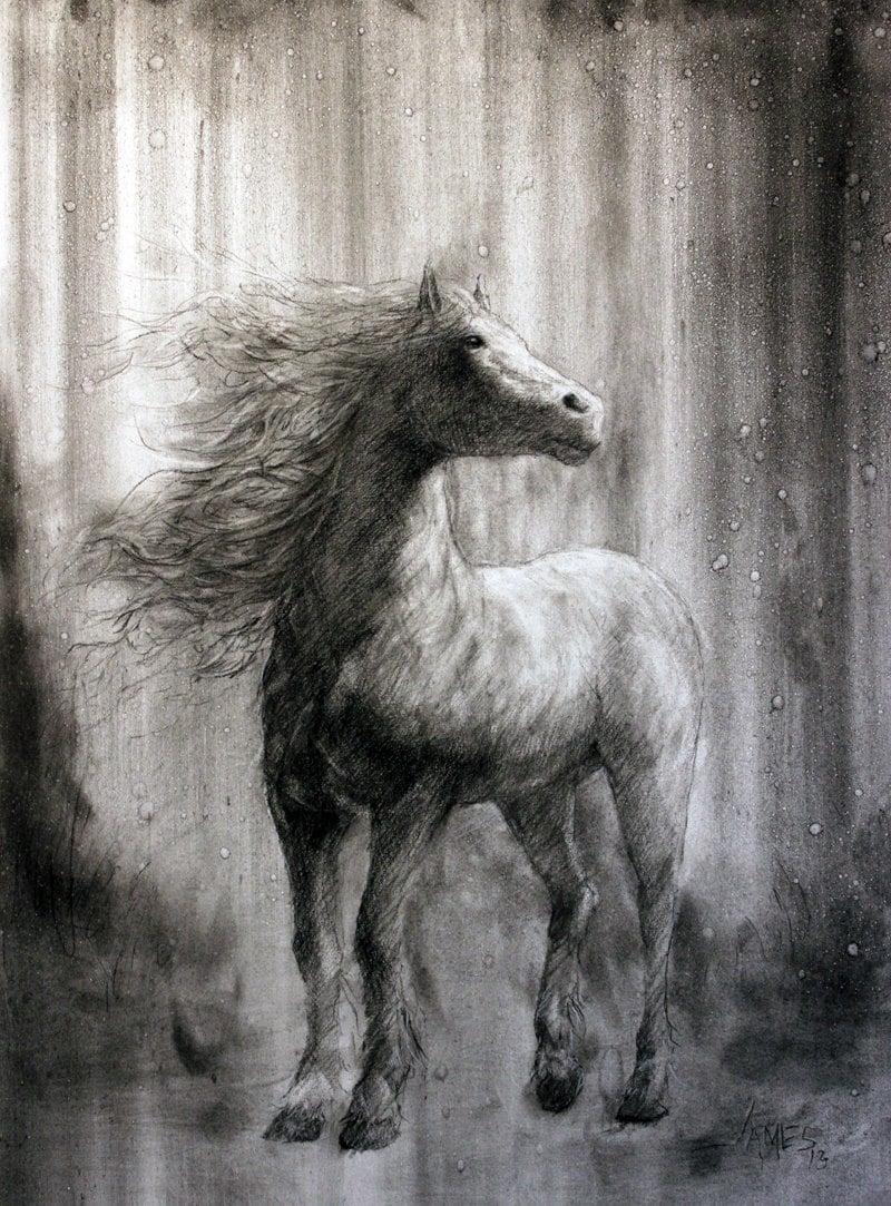 Items similar to Spirit StallionCharcoal Horse Drawing