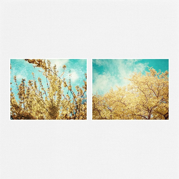 Items similar to Yellow and Teal Nature Photography Set of