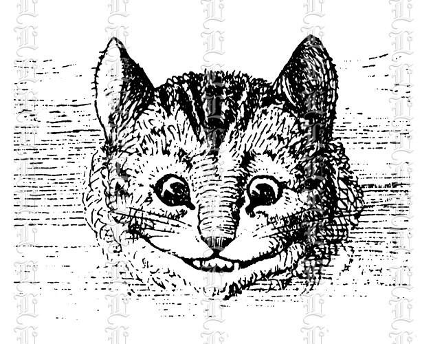 Cheshire Cat Smile Portrait Alice Wonderland by