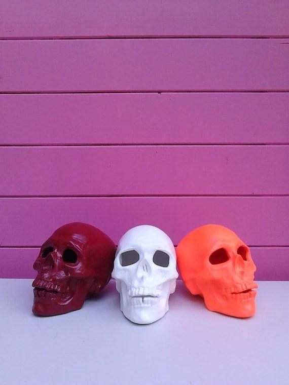 Skull, human skull, skull decor, anatomy decor, halloween skull, spooky decor