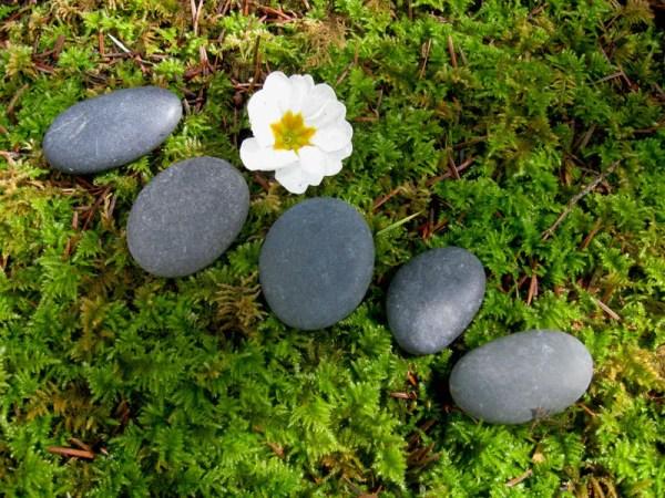 5 smooth flat river rocks miniature