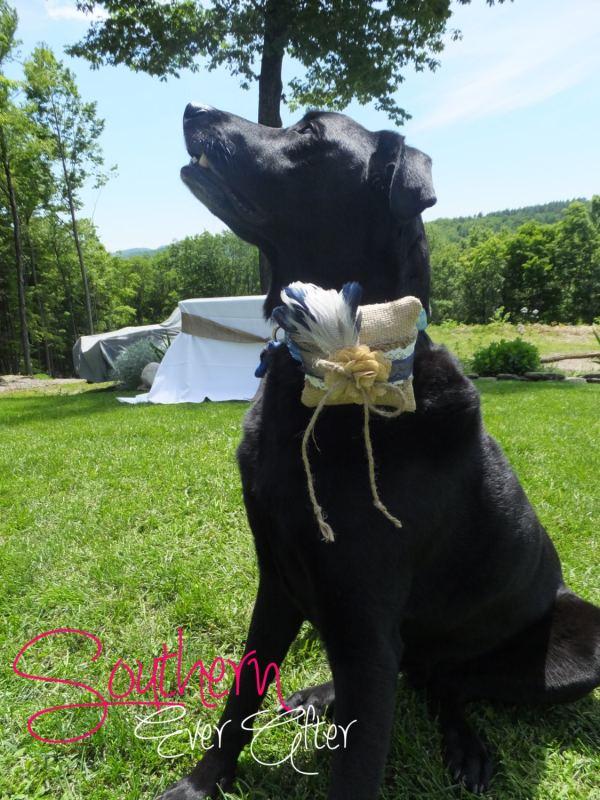 DOG RING BEARER Pillow Rustic Burlap Ring by
