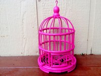 Hot Pink Bird Cage Pink Home Decor Teen Room Decor Chic
