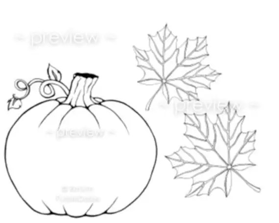Items similar to Printable Adult Color Page Pumpkin Autumn