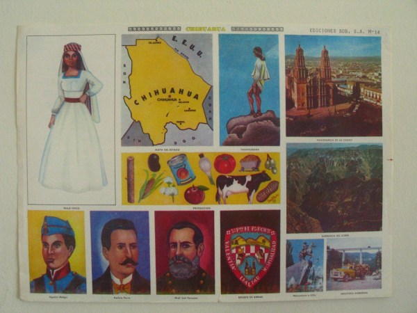 Vintage School Class Educational Poster-mexico State